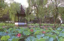 Luxury Travel agency China