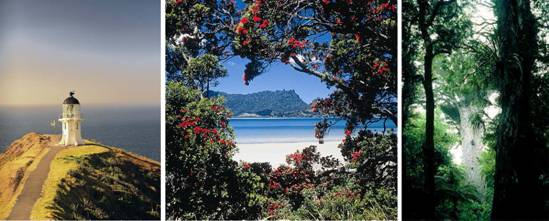 Luxury Travel New Zealand