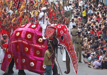 Luxury Travel Sri Lanka